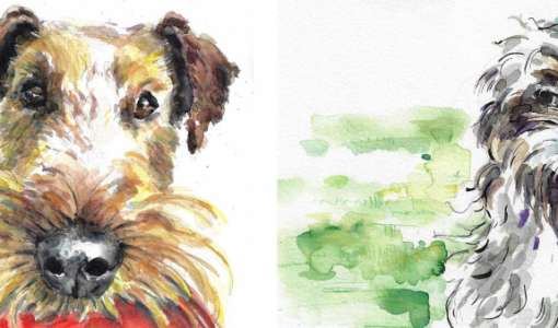 After work: Tiere in Aquarell Basics